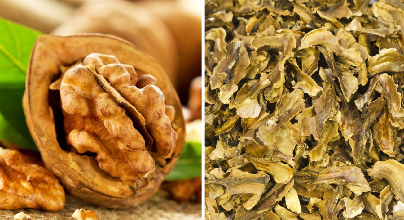 Грецкий орех: все качества гигантского дерева и его плодов