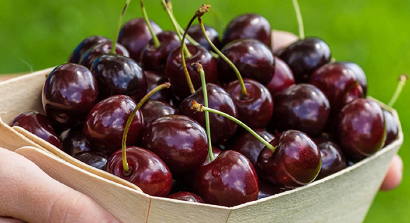 Вкусная и сочная черешня: состав, польза и особенности действия на организм